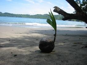 200508 - Costa Rica (49)