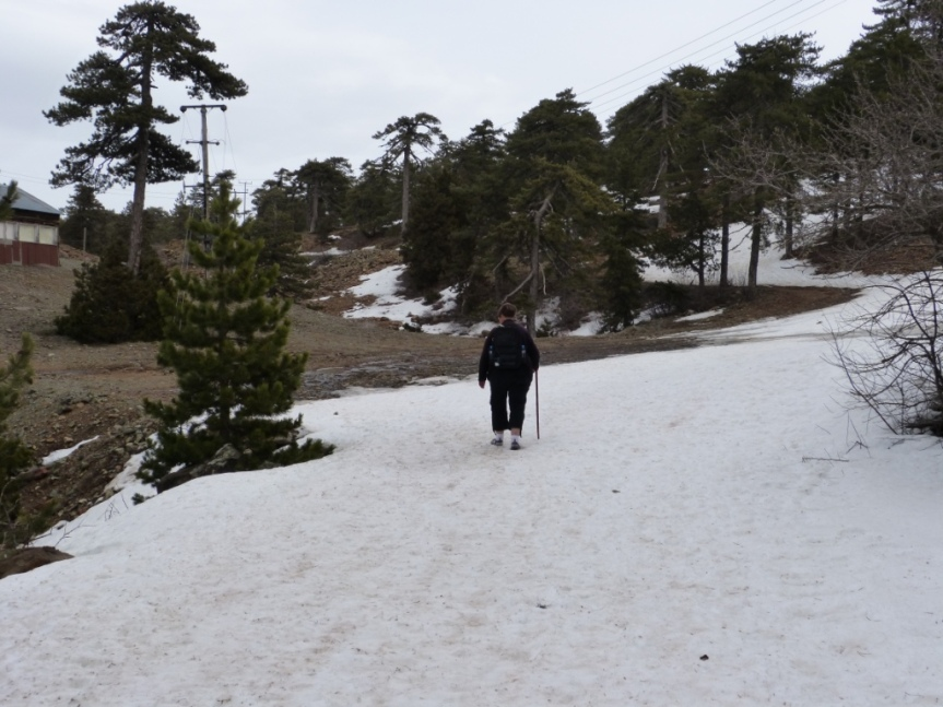 130312 P o S Artemis trail (13)