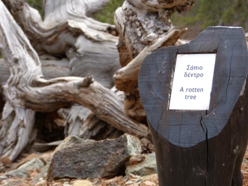 Beskrivande texter så man vet vad man ser längs Artemis Trail.