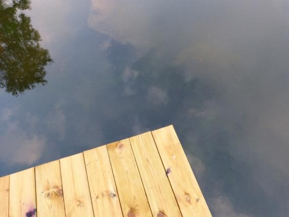 130715 Fiske vid sjön (40)