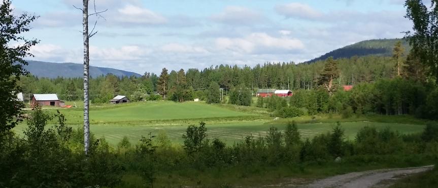 Drömmen om den svenska sommaren? Blå himmel, gröna åkrar i skogsbrynet, röda stugor... Vackert och rör vid något längst inne i själen. Jo det gör faktiskt det.