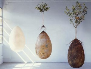 http://www.capsulamundi.it/en/project/