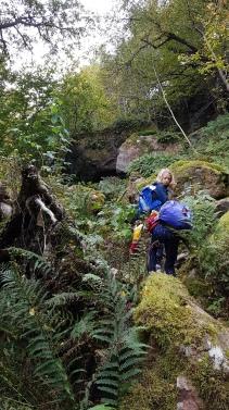 Lite klättring i en fantastisk, mossbevuxen urskog