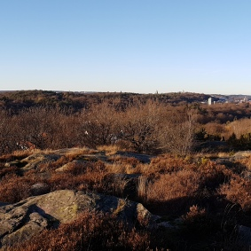 Härifrån såg vi Älvsborgsbron och havet...otroligt vackert.