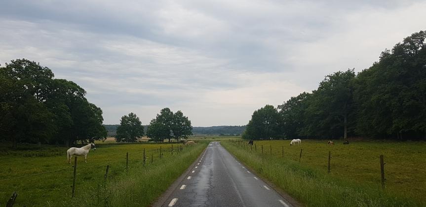 2018-05-29 Tofta Herrgård