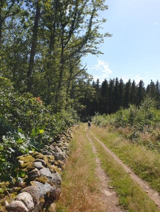 2020-07-18 Hallandsleden etapp 1 (22)